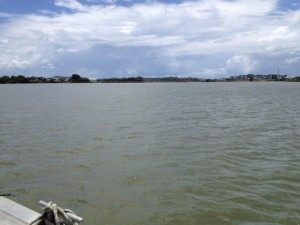 The Tamaki River.